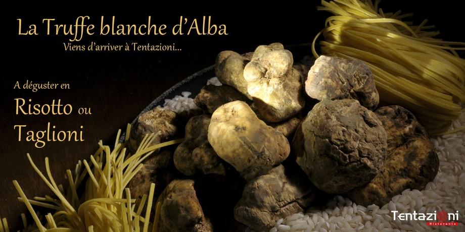 La truffe blanche d 39 alba tentazioni restaurant italien for Alba cuisine italienne